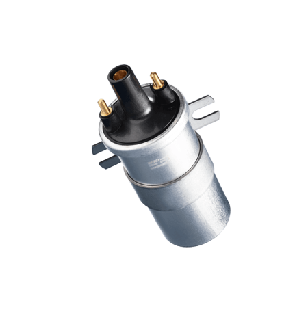 Canister-type Ignition Coils