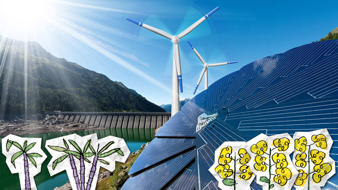 Supporting clean energy globally