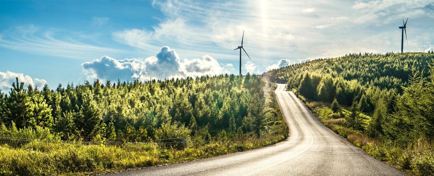 01 | Sustainability Report